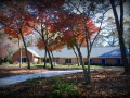 Ultra-Premium Designer Camelot Shingles in Williamsburg Slate – Bogart, GA